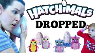 🐣Hatchimals DROPPED😳
