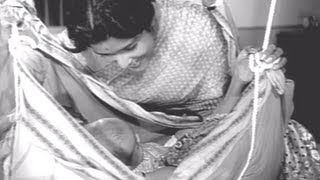Hale Jhulat Dhule Palana, Shobha Khote, Chimukla Pahuna, Song