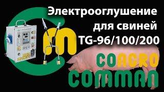 Электрооглушение для свиней TG-96/100/200