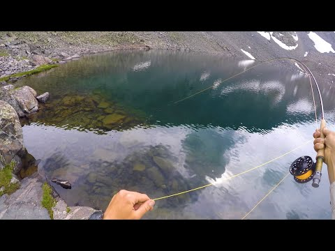 Rocky Mountain Fly Fishing // HIGH ALPINE CUTTHROAT
