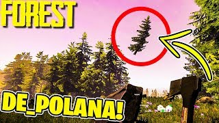 THE FOREST MULTI #21 - KONTYNUUJEMY THE POLANA CHALLENGE!