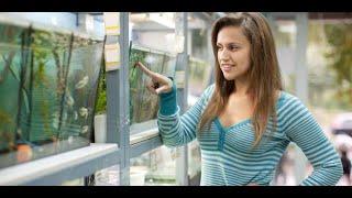 Los 10 peces que debes comprar