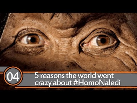 5 reasons the world went crazy about #HomoNaledi