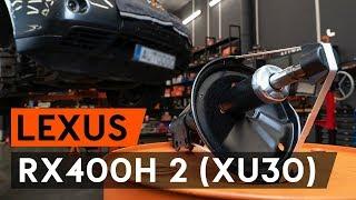 Underhåll Lexus RX XU30 - videoinstruktioner