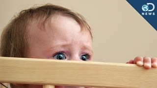 Babies Can Smell Your Fear!