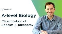 Classification of Species & Taxonomy | A-level Biology | OCR, AQA, Edexcel