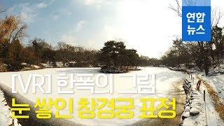 [VR] '한폭의 그림'... 눈 쌓인 창경궁 표정 / 연합뉴스 (Yonhapnews)