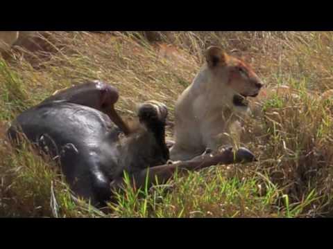 PC Uganda 09 Part 2