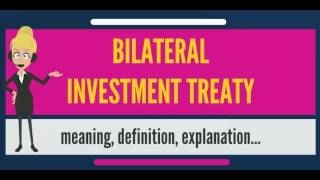 What is BILATERAL INVESTMENT TREATY? What does BILATERAL INVESTMENT TREATY mean?