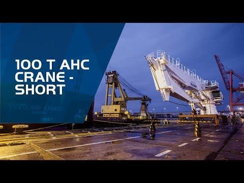 PALFINGER MARINE - DKF 1600 - 100 t AHC crane (short version)