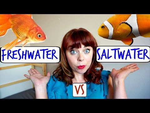 FRESHWATER VS SALTWATER | Is Saltwater Really Harder?