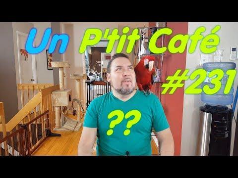 Un p'tit café ? On parle de tout et de perroquets! # 231