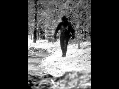 The UNKNOWN     An Anthropologist verdict on Bigfoot Part 1