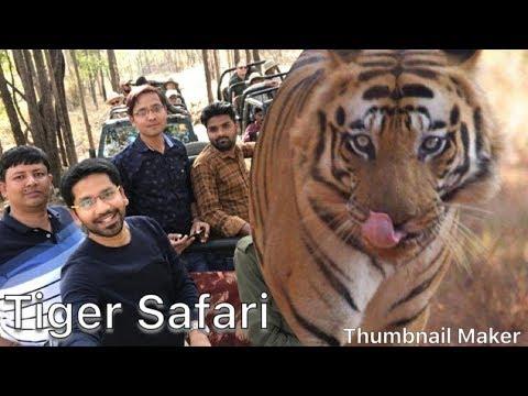 Satpura Tiger Reserve Safari Awesome Experience- Madai, Madhya Pradesh, India