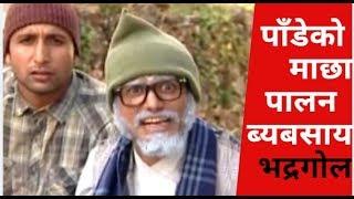Bhadragol, पाँडेको माछा पालन  ब्यबसाय भद्रगोल  !! Best Comedy