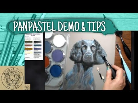 An Introduction to PanPastel - Tips, Techniques, Tools