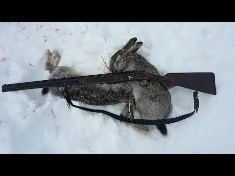 Дал Зайцу Шанс!!! Охота на зайца С Русской Пегой Гончей. Охота с 20 калибром.