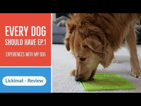 Slow Feeder, Cool Down, Boredom Buster For Dogs - Hyper Pet Lickimat - Review