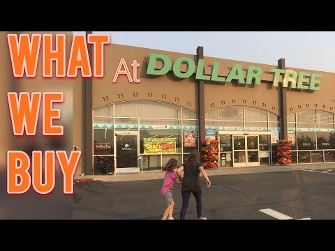 what-we-buy-at-the-dollar-tree