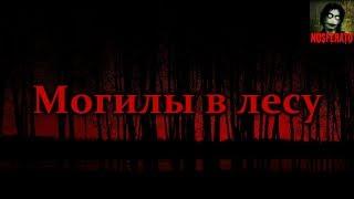 Истории на ночь - Могилы в лесу