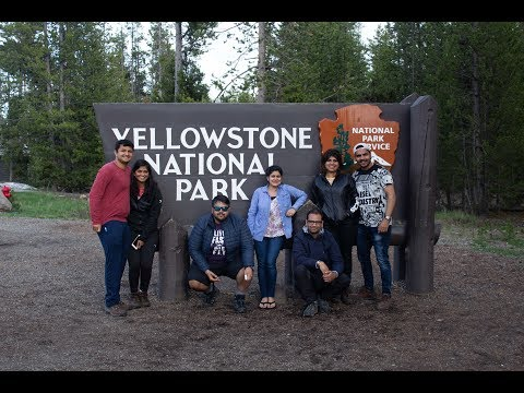 Yellowstone Day One (Grand Teton, Grizzly Bear And Magestic Old Faithful)