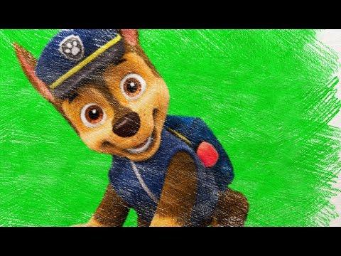 Paw Patrol Ryder Chase Marshall Skye Rocky Rubble Zuma