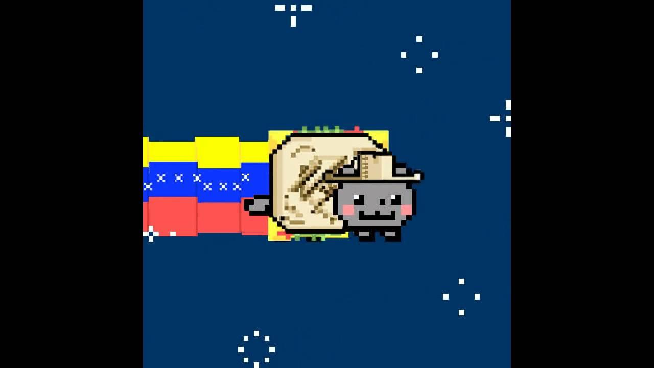 Nyan Nyan Cat Youtube