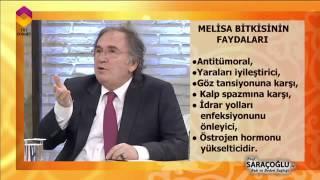 Melisa Bitkisinin Faydaları - DİYANET TV
