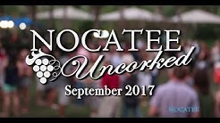 Nocatee Uncorked Wine Tasting- September 2017