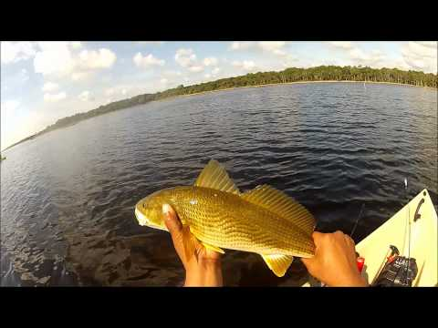 Catching Redfish And Trout At Guana Lake In My Nucanoe - MONSTER RECORD HUGE FISH
