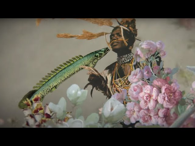 Naiá Camargo - Onde eu tô? (Official Music Video)