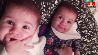 কিউট দুই বাচ্চা মজা ও খেলা করছে দেখুন । Funny Baby Playing Together || AIN-Channel ||