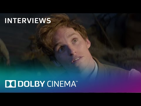 Fantastic Beasts and Where to Find Them: David Yates Talks Dolby | Interview | Dolby Cinema | Dolby Mp3