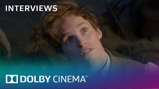 Fantastic Beasts And Where To Find Them: David Yates Talks Dolby | Interview | Dolby Cinema | Dolby