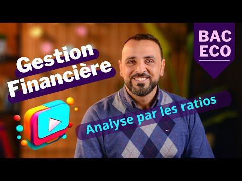 l'analyse financière par les ratios