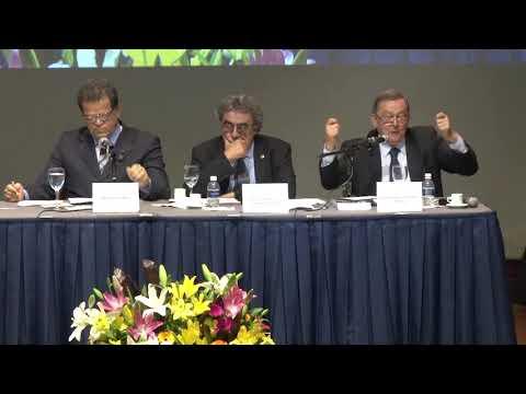 VIII Congresso Internacional de Direito do Trabalho da Academia Brasileira de Direito do Trabalho e VII Jornada Iberoamericana de Derecho del Trabajo y de la Seguridad Social - 2018 - Painel 9 - Pedro Paulo
