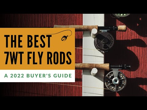 Best 7 Weight Fly Rods (2020 Buyer's Guide)
