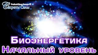 """Вебинар - эзотерика  """"Биоэнергетика. Начальный уровень"""". Сергей Ратнер."""