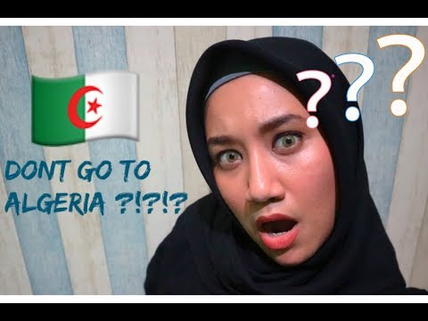 INDONESIAN React to Don't go to Algeria - Travel film by Tolt