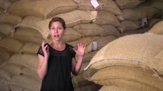 Feast TV: Kaldi's Coffee
