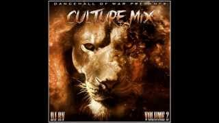 Reggae & Culture Mix 2013, Chronixx, Lutan Fyah, I-Octane, & More