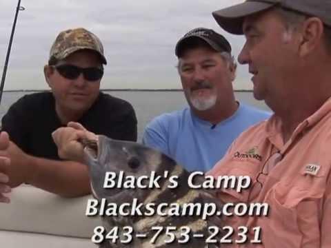 L 28 Sheepshead Fishing In Charleston, SC