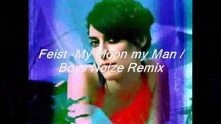 Feist - My Moon My Man / Boys Noize Remix