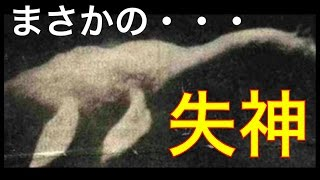 【閲覧注意】気絶したネッシー亜種?!肉食&凶暴なヤバいUMAの生態に迫る!