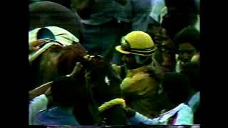 VERSET'S DANCER - Celebración Clásico Del Caribe 1983