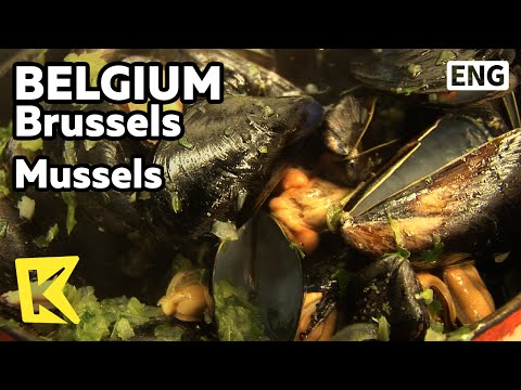 【K】Belgium Travel-Brussels[벨기에 여행-브뤼셀]일로 샤크레 식당가, 홍합요리/Chez Leon/Mussels/Restaurant/Ilot-Sacre