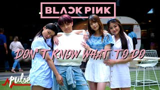 [KPOP IN PUBLIC] BLACKPINK 블랙핑크 - Don't Know What To Do | Pulse Dance Crew Australia (Dance Cover)