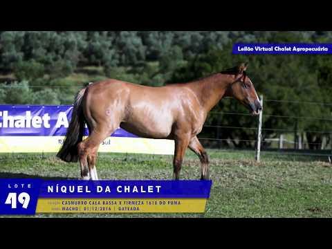 LOTE 49 - Níquel da Chalet