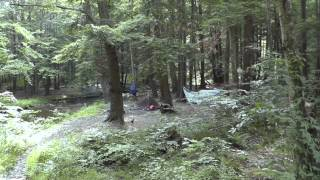 Allegheny National Forest hiking/camping trip