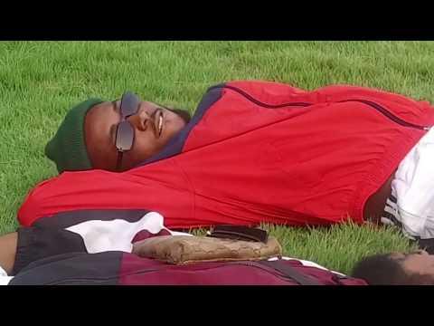 Darkovibes - Bo Noor (Dance Video)